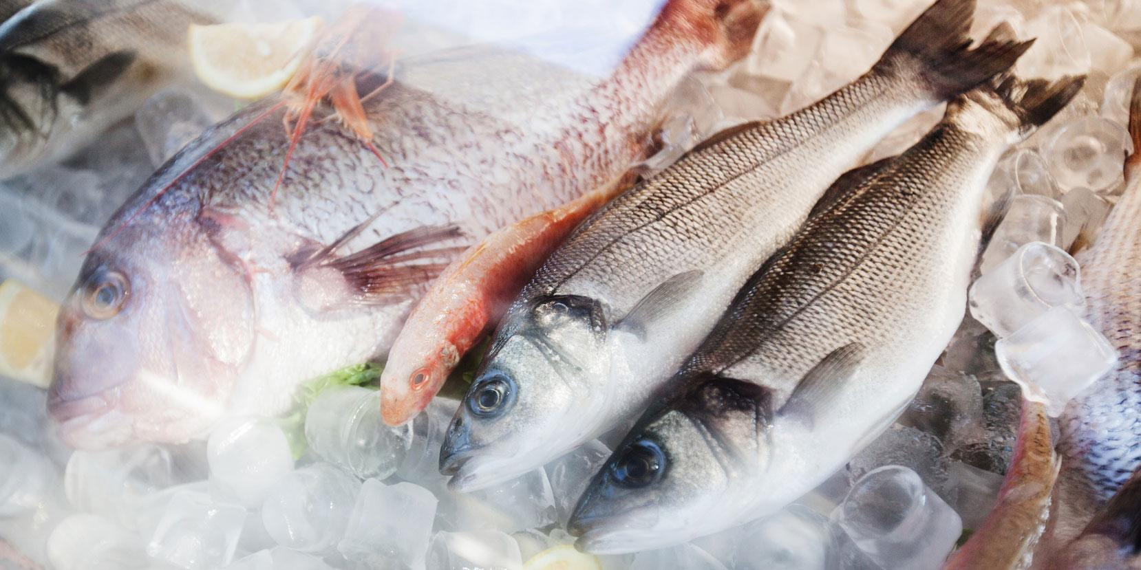 Fulton Fish Market is the largest consortium of seafood wholesalers in the country. photo: Fotolia