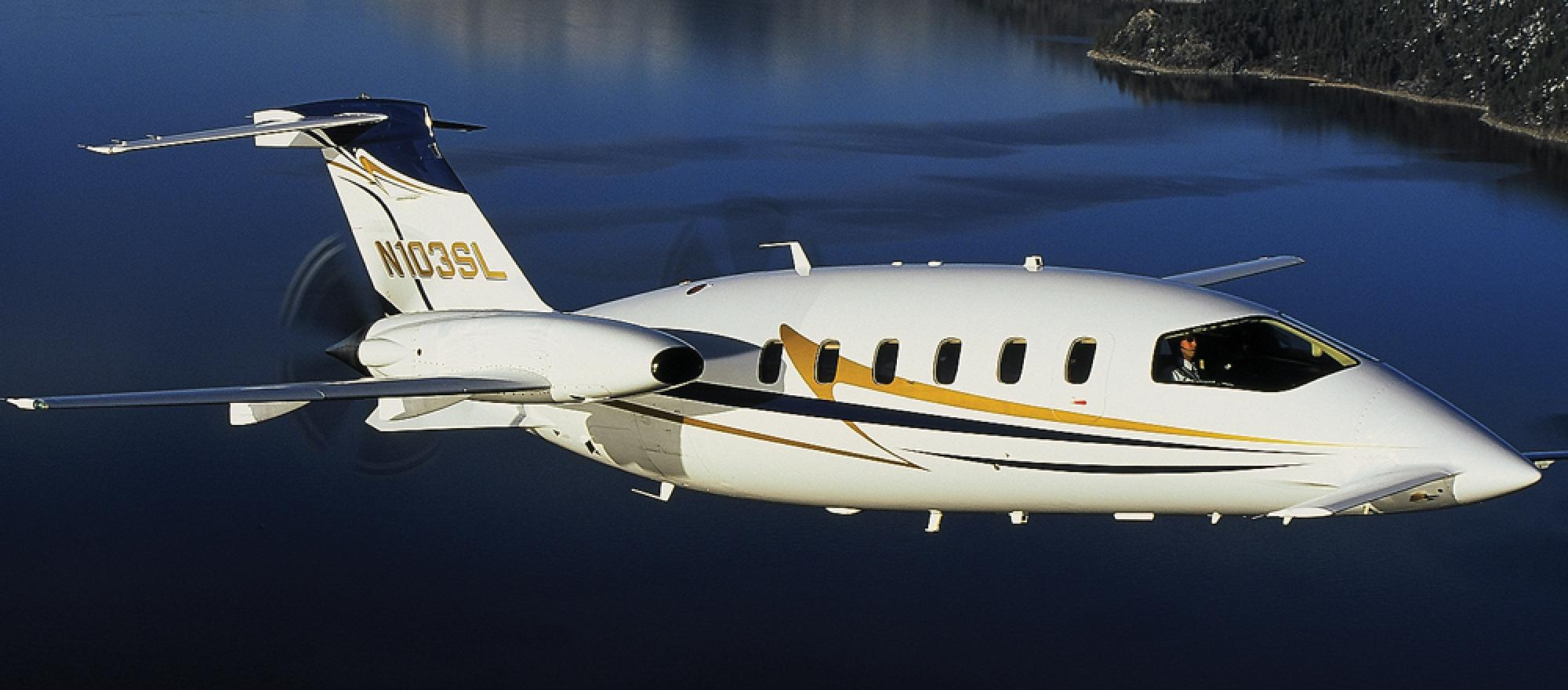 Avantair's 56 Piaggio Avanti twin turboprops have been grounded since June 6.