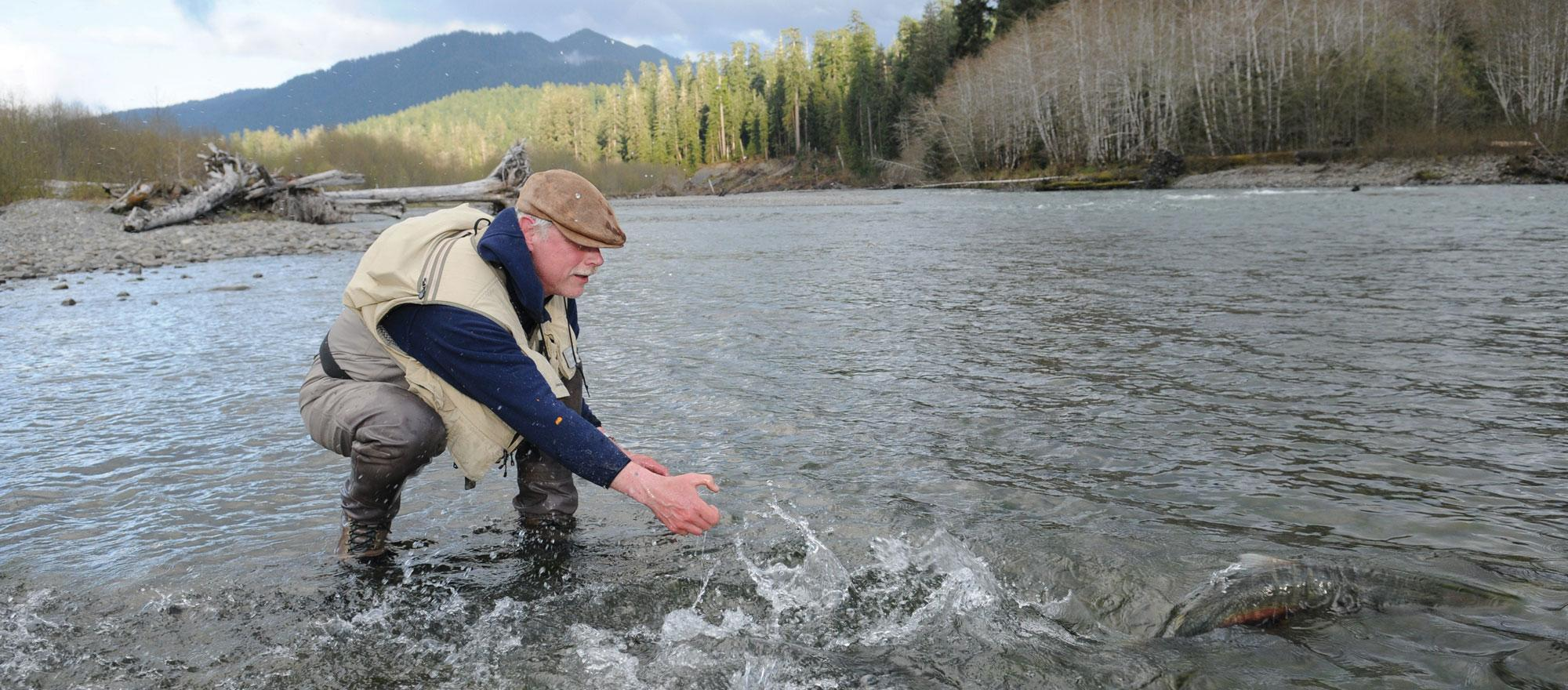 Veteran steelhead fisherman Sean Gallagher releases a native steelhead so it can spawn. (Photo: Gregory Smith Design)