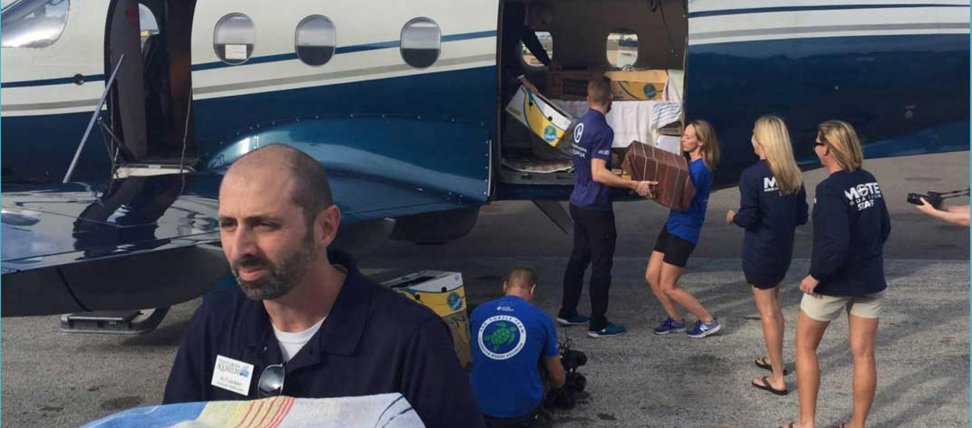 Animal care technicians unloading sea turtles from turboprop
