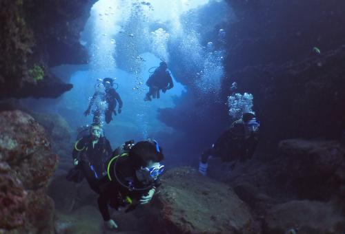 Diving Hawaii's Lava Tubes
