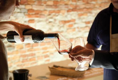 Stellar wines from Italy's Piedmont region